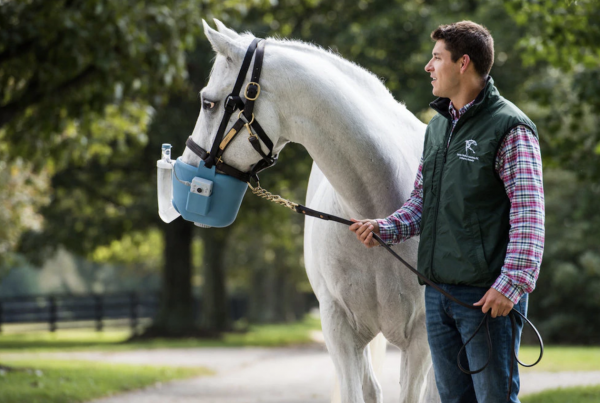 Unique NORTEV equine nebulizer: helping the global equine market breathe easier
